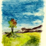 Rowan cairn